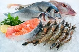 84% of world's fish not safe to eat more than once a month | Pollution and Human Health | Scoop.it