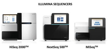 Know About the Importance of DNA Sequencing In Today's Time | mogene | Scoop.it