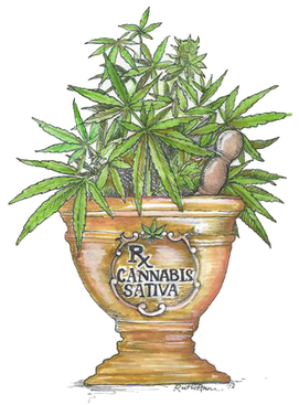 Patients' Guide to Medical Marijuana Law in California | California NORML | FAQ - Medical Marijuana | Scoop.it