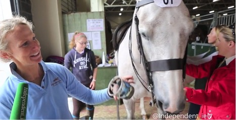 Video: Horses flaunt hoof varnish and 'natural makeup' at the Dublin Horse Show | Independent.ie | The Jurga Report: Horse Health, Welfare, and Care | Scoop.it