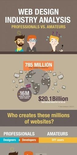 Web Design Industry Analysis: Professionals vs. Amateurs ...   MAXixx Web Design Experts India   Scoop.it