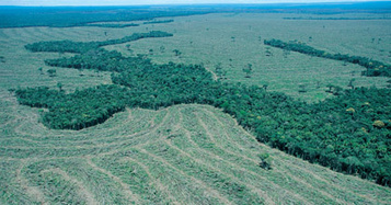 How does desertification occur?   North America   Scoop.it