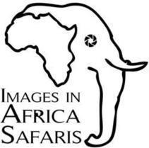 Images in Africa Safaris adds Maasai Mara Wildebeest & Zebra Migration ... - PR Web (press release) | My Funny Africa.. Bushwhacker anecdotes | Scoop.it