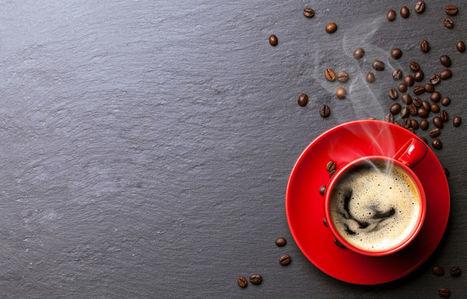 Le rayon café en pleine effervescence - LSA | Chicorée | Scoop.it