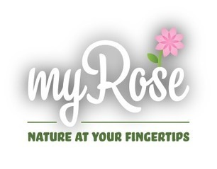 Nature at your fingertips • myRose   Annie Haven   Haven Brand   Scoop.it