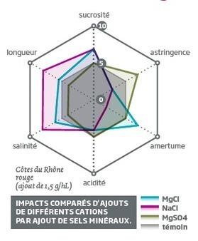 Les minéraux et le vin : la salinité, le chaînon manquant | vin et vinification, dernières avancées | Scoop.it