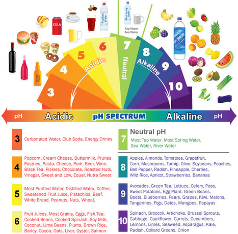 Acidic & Alkaline Foods Infographic | Build Health | Scoop.it
