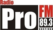 Radio PRO FM Gostivari 89.3 Live Online || Albania - Radio-Hitz | Listen Free live FM or AM Hit Radios Online worldwide | Scoop.it