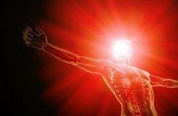 eHealth, Big Data y el cuerpo humano: el nuevo proyecto de Google | Innova | Scoop.it