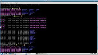 Taller de Sistemas Operativos: Práctica 3 Comandos de Linux(Lubuntu) | Siguiendo a Linux | Scoop.it