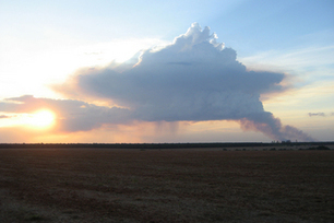 Tower of Power: Australia Fires Spawn Pyrocumulus Clouds   Primary science   Scoop.it