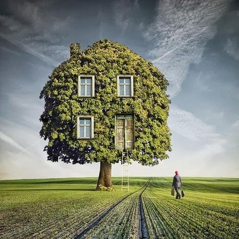 Copropriété : La décision désignant le syndic s'impose tant que la nullité n'est pas prononcée | Immobilier | Scoop.it