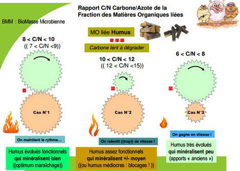 C/N des Matières Organiques labiles et des humus : quel fonctionnement du sol ? | MOF Matière Organique Fugace réactive du sol | Scoop.it