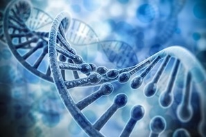 The CRISPR Clash: Who owns this groundbreaking, DNA altering technique? - IPWatchdog.com | Patents & Patent Law | Genome Engineering | Scoop.it