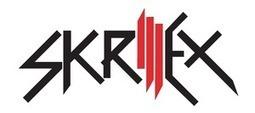 Skrillex at Music Hall of Williamsburg on 02/11/2014 09:00 PM EST | brooklyn music | Scoop.it