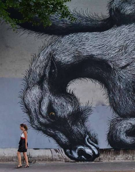 New Environmental Street Art by ROA | Colossal | Street art news | Scoop.it