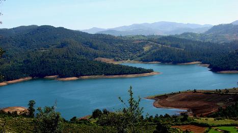 6 Days Mysore Ooty Kodaikanal Tour Package   Karnataka Holidays   Online Travel Agency   Scoop.it