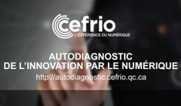 Autodiagnostic de l'innovation par le numérique pour les organisations : Outil en ligne | Réseaux d'experts | Scoop.it