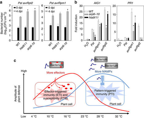 Plant immune response to pathogens differs with changing temperatures | Interactions | Scoop.it