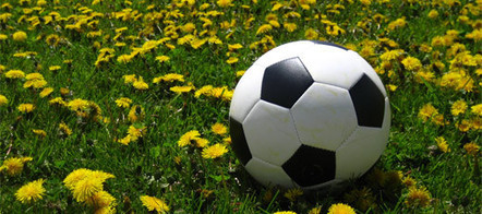 Sports in Spain & Latin America | Spain, Patrick D. Starnes | Scoop.it