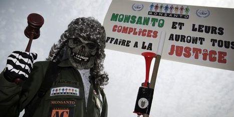 Qui veut la peau de Monsanto? | Questions de développement ... | Scoop.it