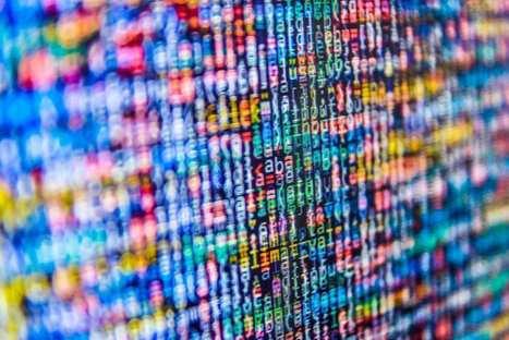 FRANCE: Quelles sont les données les plus privées pour les Français?   Cybercrime & Privacy   Scoop.it