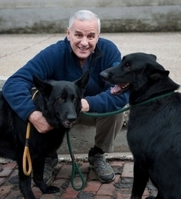 Dayton's Dog, Mesabi, Dies Following Surgery | Minnesota Pet News | Scoop.it
