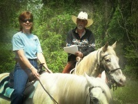 Wild Horse Freedom Federation to Deliver Letters to thePresident | The Wild Planet | Scoop.it