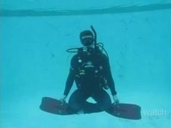 Enjoy the Experience of scuba diving in Florida   Bookmarking   Scoop.it