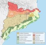 La Catalogne au naturel!... - La Pipette aux quatre vins | Tourisme en Catalogne - Paused topic | Scoop.it