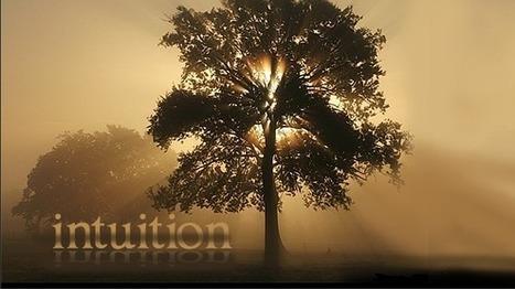L'intuition, c'est simple, bordel ! - Intuition et Connaissance | Intuition | Scoop.it