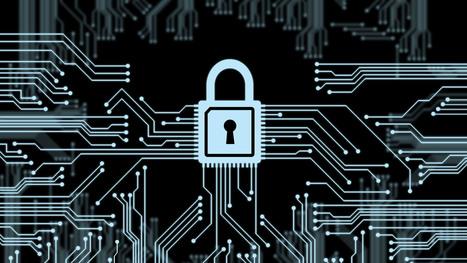 Tráfico de internet cifrado aumenta tras las revelaciones de Snowden   Libertad en la red   Scoop.it