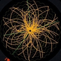 Higgs signal gains strength : Nature News & Comment | Knowledge | Scoop.it