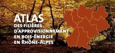 L'Atlas 2015 de l'approvisionnement bois-énergie en Rhône-Alpes | Salon Bois Energie du 12 au 22 mars 2015 à Nantes | Scoop.it
