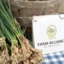 Farm Alliance of Baltimore Improves Viability of Urban Farming - Ecopreneurist | Urban Agriculture | Scoop.it