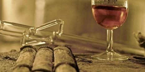 Après les Russes, les Chinois s'intéressent aux vignobles de Cognac | Le vin quotidien | Scoop.it