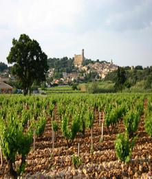 Les évènements en PACA :: terroir et gastronomie les printemps de chateauneuf du pape salon des vins chateauneuf du pape | Sortir- Région aixoise | Scoop.it