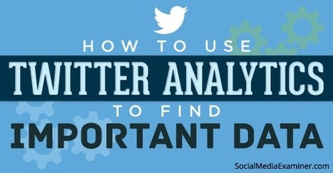 How to Use Twitter Analytics to Find Important Data | | ePhilanthropy | Scoop.it