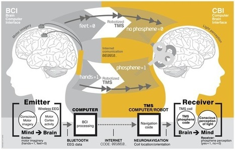 Researchers Successfully Achieve Human Brain-to-Brain Communication - IGN | Neuroscience | Scoop.it