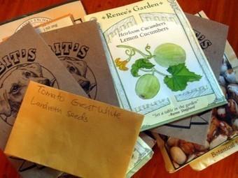 5 Ways to Get Free Seeds for Your Garden   Gardening in Chicago   Scoop.it