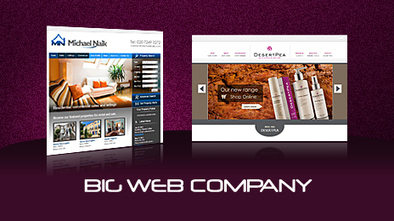 Best Services Of Website Design Company   Big Web Company   Scoop.it