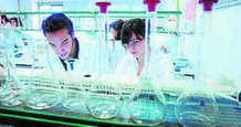 Andalucía lidera la creación de empresas biotecnológicas - Granada Hoy   Comercialización de productos biotecnológicos   Scoop.it