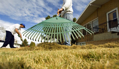 Looking at Suburban Lawns and Seeing the Future of Water Conservation - KCET | Water Conservation for Lawn and Landscape | Scoop.it