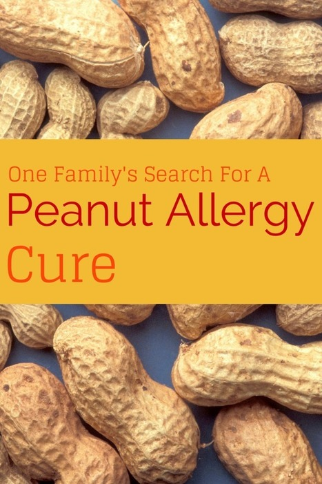 Peanut Allergy – Medicine For Peanut Allergy | FOOD STUDIES IN THE NEWS | Scoop.it