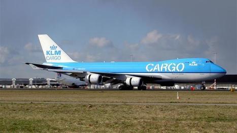 Luchtvrachtsector wil af van beschermde status KLM Cargo | Horticulture Supply Chain | Scoop.it