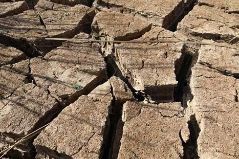 With drought intensifying worldwide, UN calls for integrated climate policies | Climate change challenges | Scoop.it