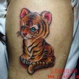 20 Tatuagens Femininas de Tigre |Tatuagens Femininas | Viagens pela Net | Scoop.it