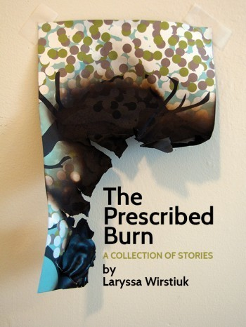 Writing, Self-Publishing and Using Kickstarter: An Interview with 'The Prescribed Burn' author Laryssa Wirstiuk | Return to the golden age of pulp | Scoop.it