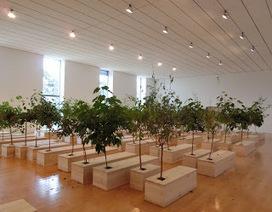 Bloc Nat: YOKO ONO au Musée d'Art Contemporain de Lyon | Le Mac LYON dans la presse | Scoop.it