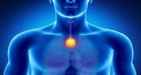 Le point du bonheur dans votre corps – Neutralisez l'énergie négative et renforcez votre système immunitaire | NewsMAG | Santé et médias | Scoop.it